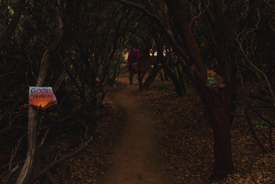 Entrance to the maze.