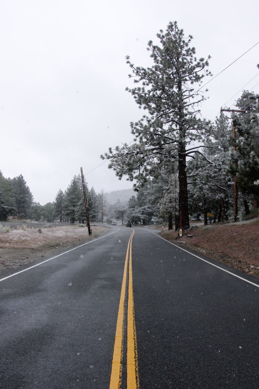 The road leading out of Wrightwood.
