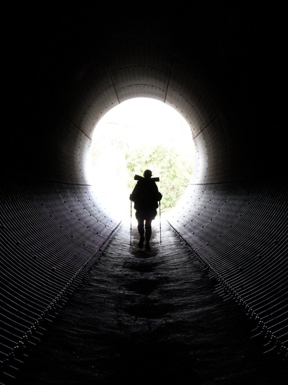 Tunnels that create paths under highways.