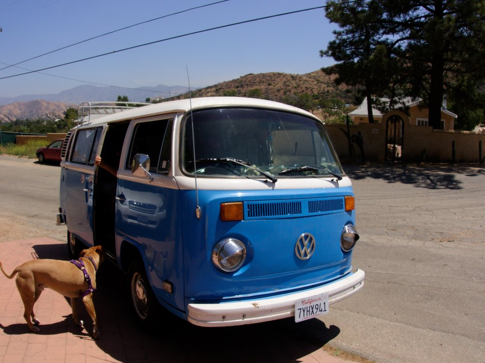 We got a hitch to Hiker Haven in my dream car. Dog included.