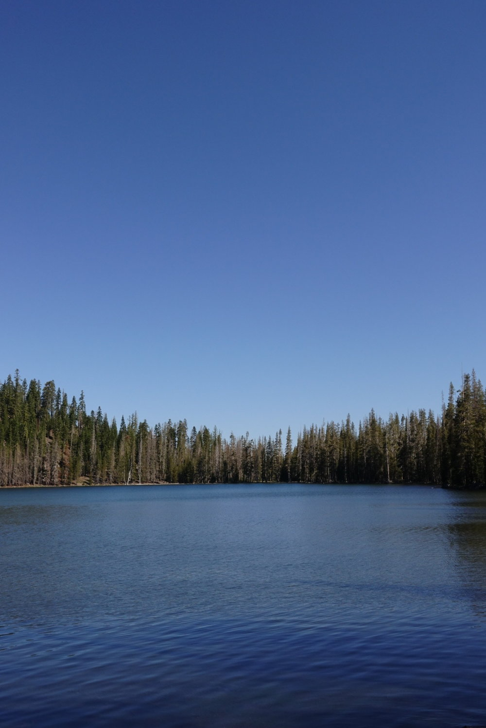 Lower Twin Lake. Had my first swim in an on trail lake!