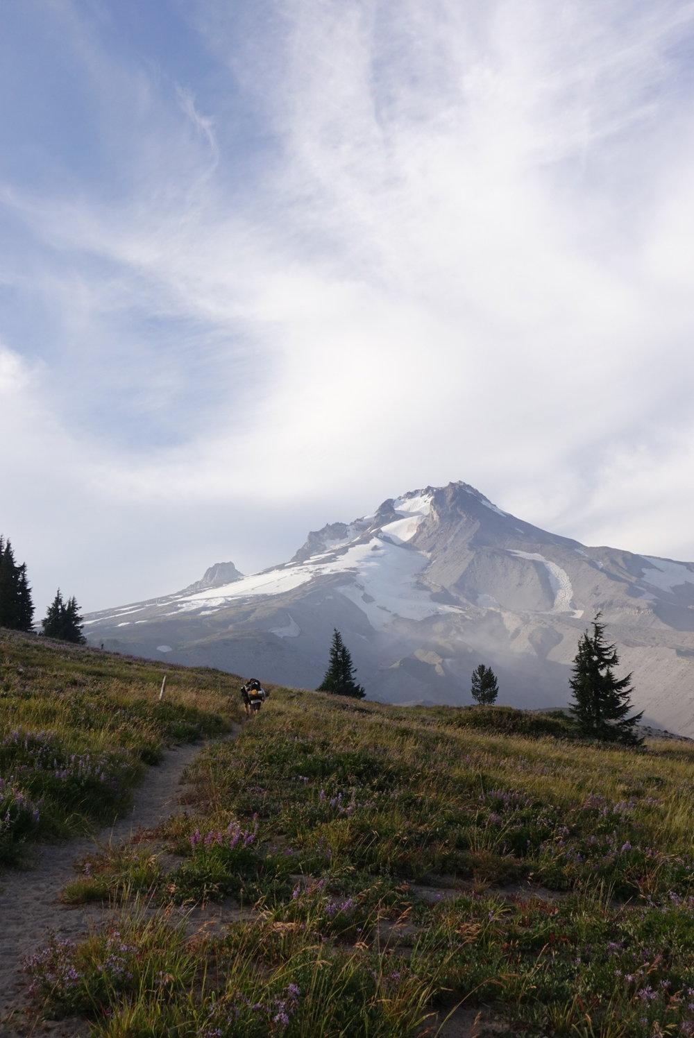 Majestic Mt. Hood.