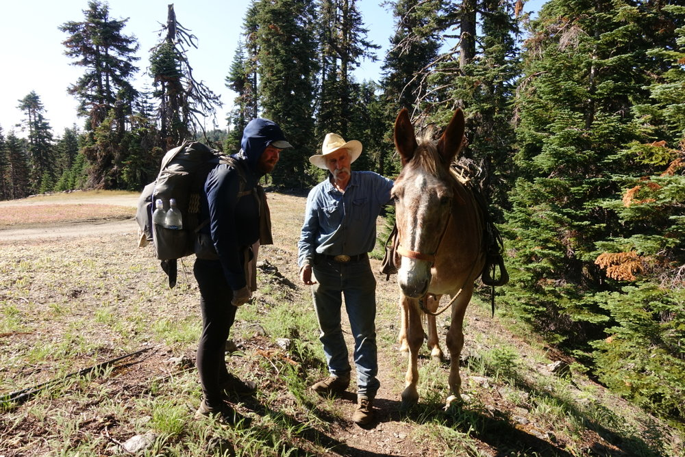 Bill, the horseback Forest Service Worker.