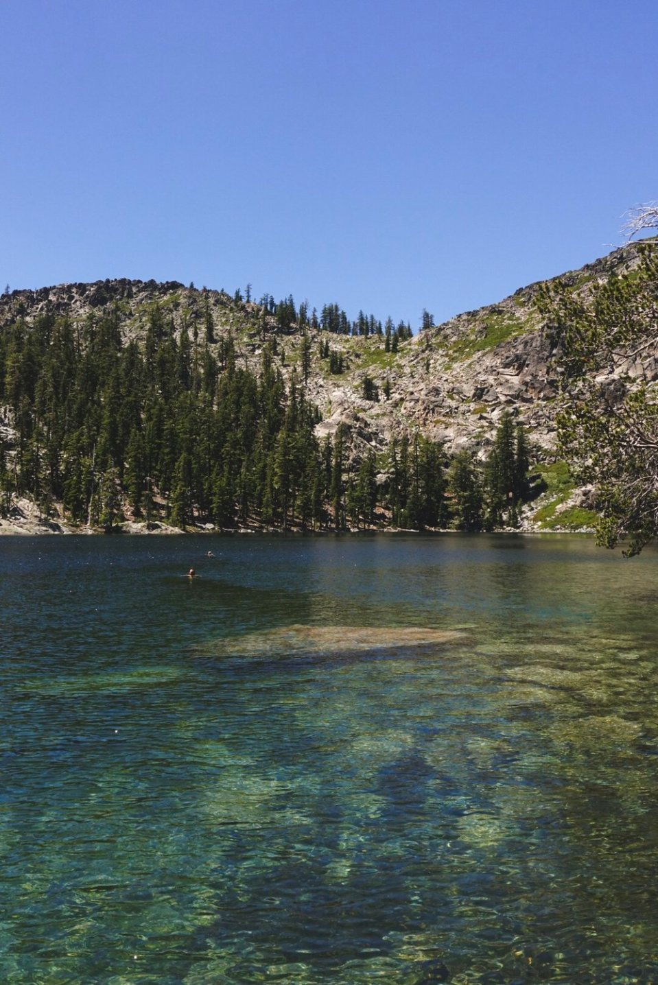 Porcupine Lake, one of the best swims in the northern hemisphere. Source: me.